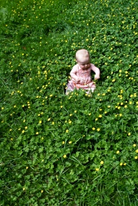 2-baby-in-a-flower-field_sm